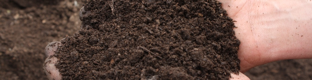 Home A Loam Two: Loam In New York